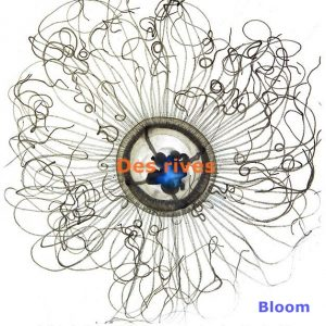 pochette-album-des-rives-bloom